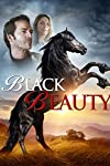 Epic corrals Black Beauty for Afm
