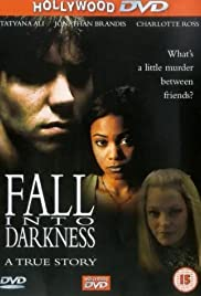 Fall Into Darkness Poster