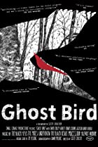 Image of Ghost Bird