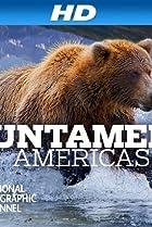 Image of Untamed Americas