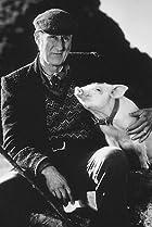 Image of Farmer Arthur Hoggett