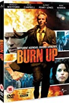 Image of Burn Up