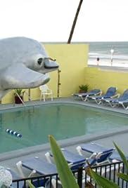 The Dream Inn: Daytona Beach, Florida Poster