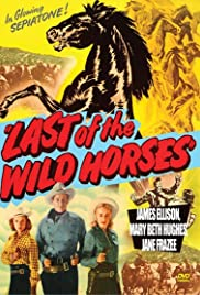 Last of the Wild Horses Poster