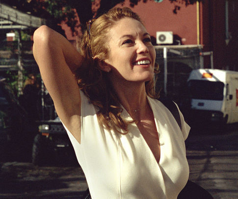 Diane Lane in Under the Tuscan Sun (2003)
