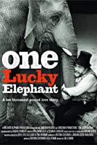 Image of One Lucky Elephant