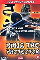 Image of Project Ninja Daredevils