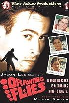 Drawing Flies (1996) Poster
