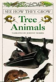 See How They Grow: Tree Animals Poster
