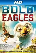 Image of Bold Eagles