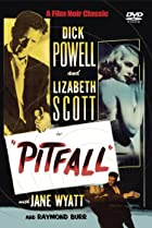 Image of Pitfall