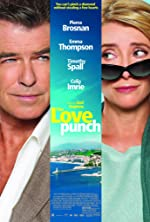 The Love Punch(2014)