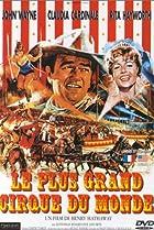 Image of Circus World