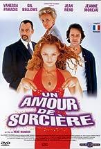 Primary image for Un amour de sorcière