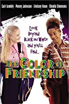 Image of The Color of Friendship