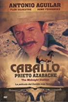 Image of Caballo prieto azabache
