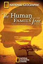 Image of The Human Family Tree