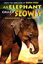 Image of An Elephant Called Slowly