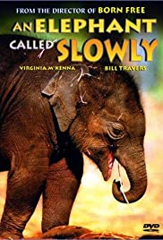 An Elephant Called Slowly Poster