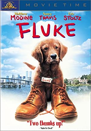 Fluke ()