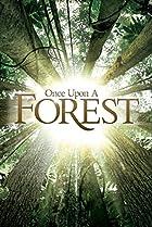 Image of Il était une forêt