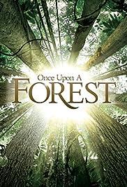 Il était une forêt(2013) Poster - Movie Forum, Cast, Reviews