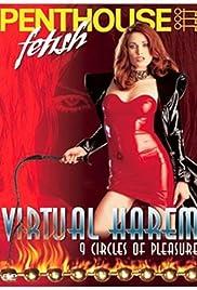 Penthouse Video: Virtual Harem Poster