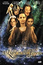 A Light in the Forest (2003) Poster