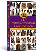 The 131st Westminster Kennel Club Dog Show