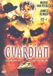 The Guardian - Season 1 (2001) poster