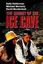 The Secret of the Ice Cave