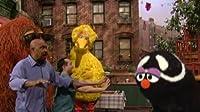 The Adventures of Little Big Bird: Part 2