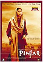 Pinjar: Beyond Boundaries Hindi(2013)