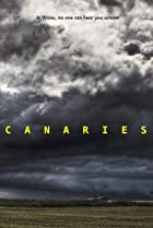 Image of Canaries