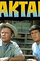 Daktari (1966) Poster