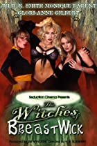 Image of The Witches of Breastwick