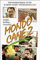 Image of Mondo pazzo