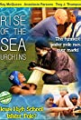 Rise of the Sea Urchins