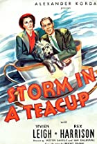 Image of Storm in a Teacup