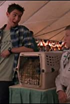 Image of Malcolm in the Middle: Vegas
