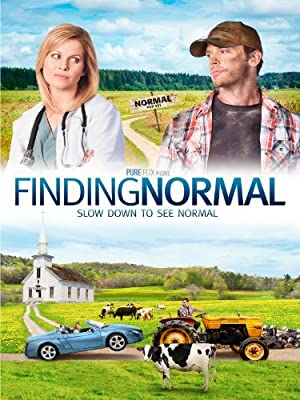 Finding Normal (2013) Download on Vidmate