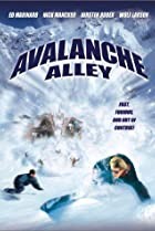 Image of Avalanche Alley