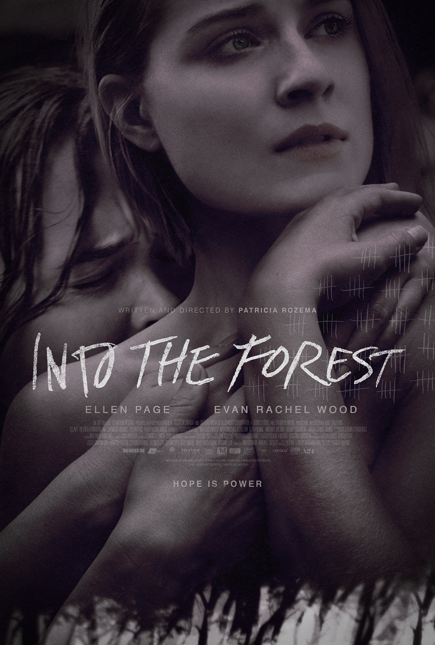 image Into the Forest Watch Full Movie Free Online