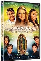 Image of La rosa de Guadalupe