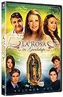 """La rosa de Guadalupe"""