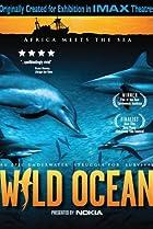 Image of Wild Ocean