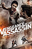 Image of Vengeance of an Assassin