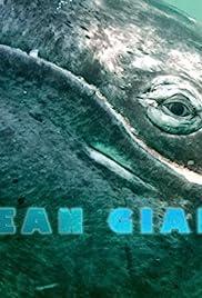 Ocean Giants Poster