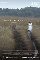 Image of Mellow Mud