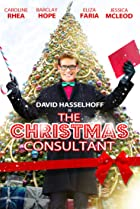 Image of The Christmas Consultant